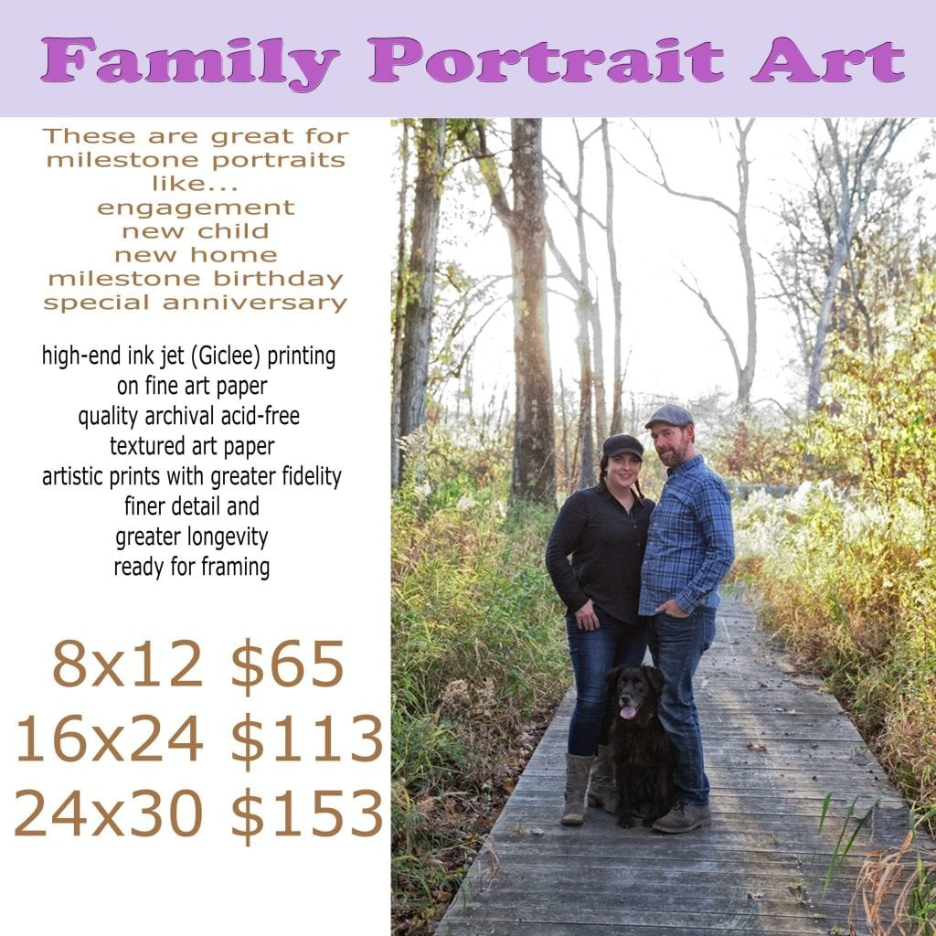 artistic family portraits guide